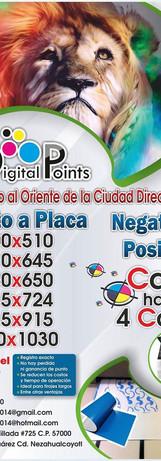placa2.jpg