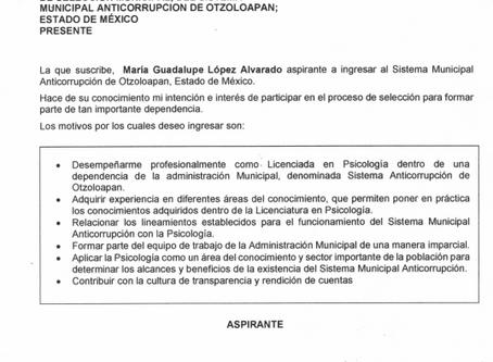 POSTULACIONES PARA EL COMITÉ DE PARTICIPACIÓN CIUDADANA 2020