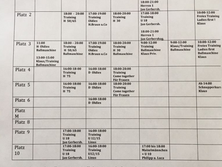 Trainingskalender Platzeinteilung