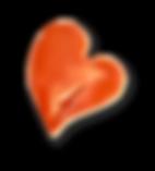 donorheart heartparade vs.png