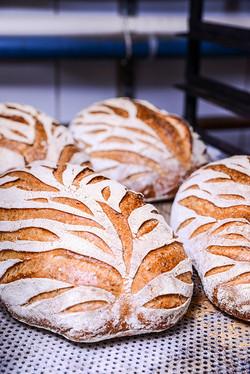bröd i stick_LOW