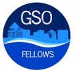 gsofellows_edited