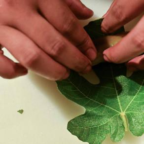 El derecho a la alimentación en el camino a la sostenibilidad.