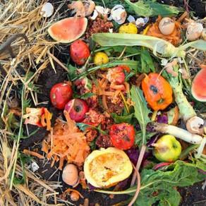 Se debe reducir a la mitad la pérdida y desperdicio de alimentos para 2030