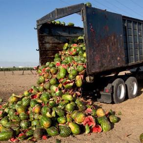 La mayor parte del desperdicio alimentario a nivel mundial se concentra en América Latina