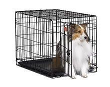 kennel.png