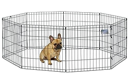 exercise pen.png