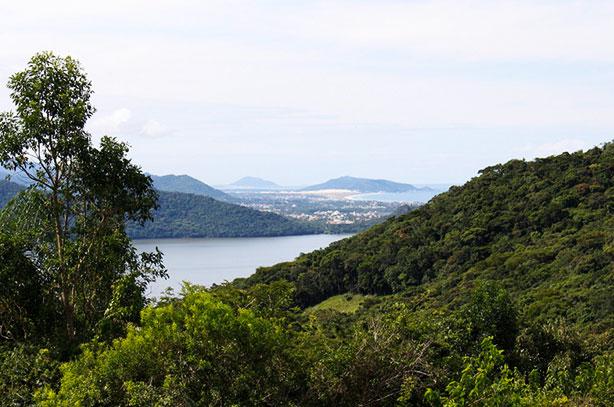Já ouviu falar no Sertão da Ilha em Floripa?