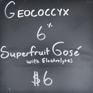 Geococcyx.png