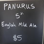 Panarus