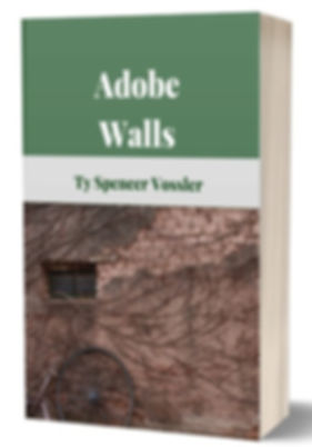Adobe%20Walls_edited.jpg
