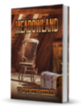 Meadowland 3D Book Cover.png