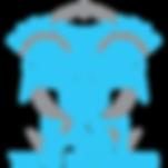 LogoLightBlue-Team-500x500.png