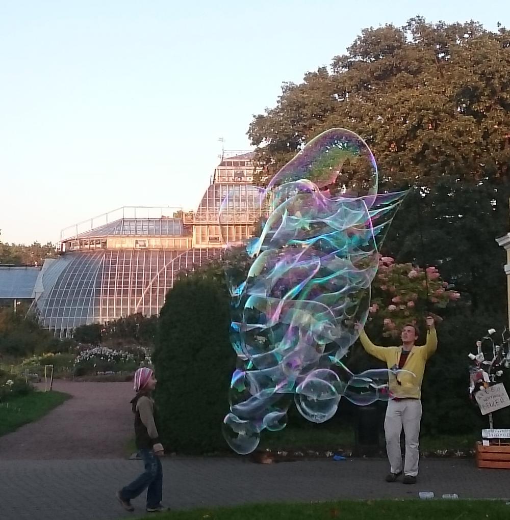 пузыри во дворе хрустального дворца