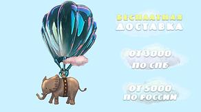 доставка по Петербургу, пузыри Гиганты