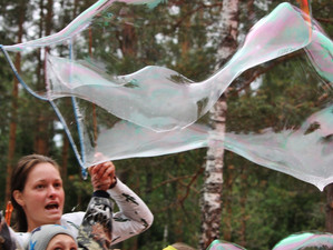 Белые ночи, пузыри в лесу.