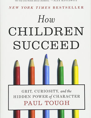 saud_masud_bold_how children succeed_pau