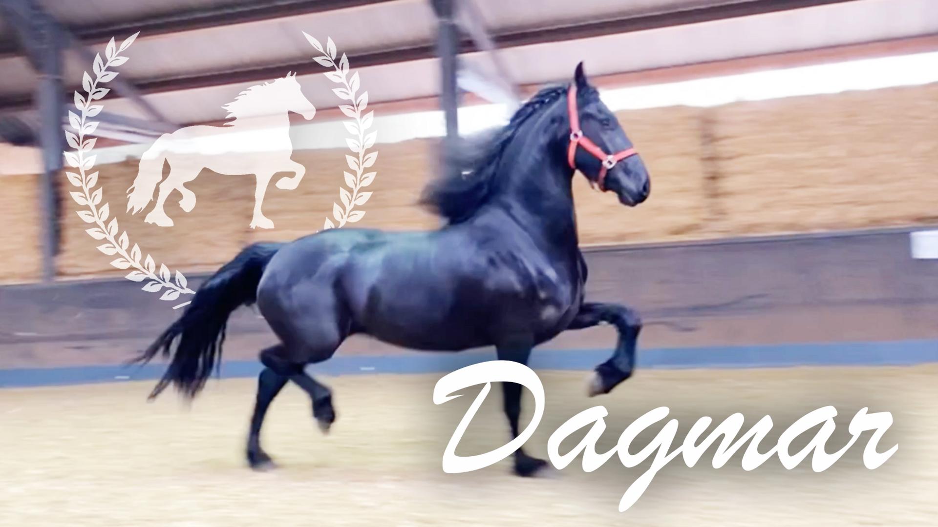 Dagmar.mp4
