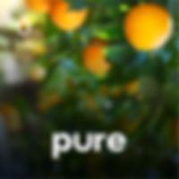 PWP_1200x1200_v2.1_03.jpg