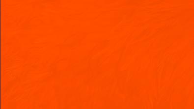 Texturas Coloridas Laranja - CUCO - Wide