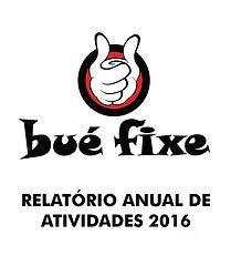 RELATÓRIO ANUAL DE ATIVIDADES 2016