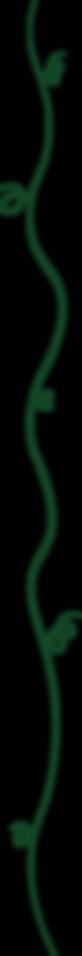 Border Assets - Dark Green Curls-10.png