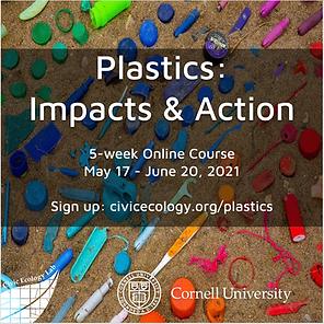 2021 Plastics Poster.png