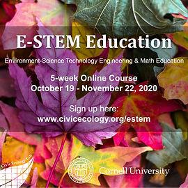 E-STEM Poster s.jpg