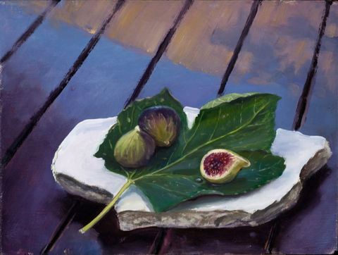 Figs in the Shade
