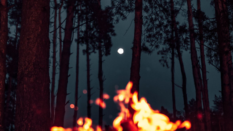 bonfire_moon_forest_166727_1920x1080.jpg