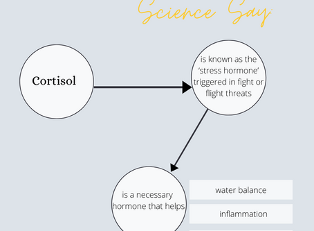What does Science say: Cortisol & Stress