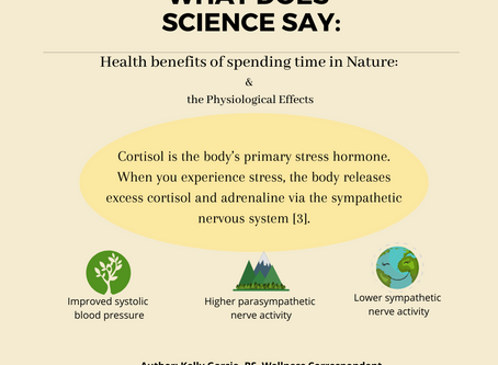 The Surprising Health Benefits of Spending Time in Nature