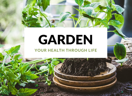 Garden your health through life: add these health boosting plants to your garden.