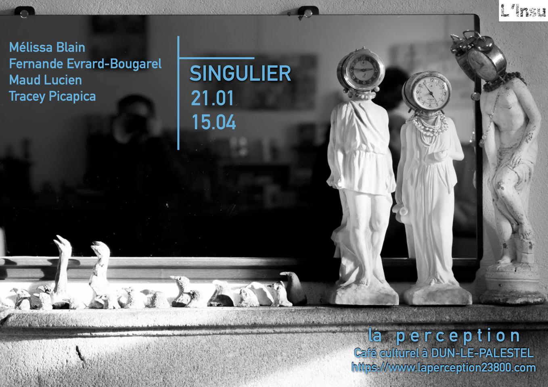 exposition singulier 2021.jpg