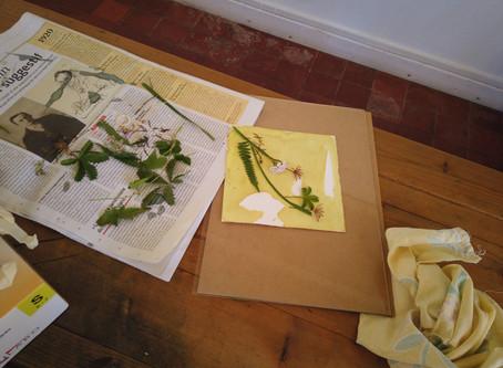 atelier cyanotype le 12/08