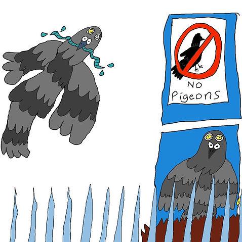 Pigeon%20spikes_edited.jpg