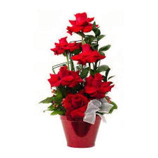 Balde com  6 rosas colombianas.