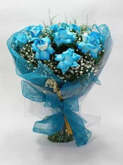 Buquê de 12 Rosas Azuis na telinha.