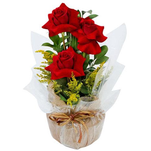 arranjo com três rosas colombianas.