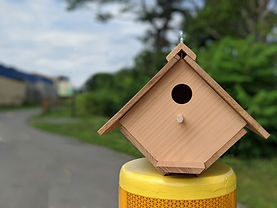 BirdhouseGreenway.jpg