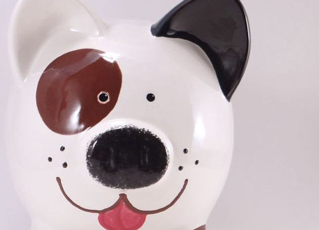 spots dog.jpg