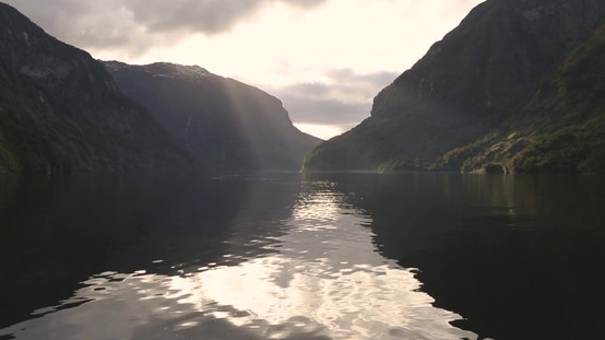 Drone NZ