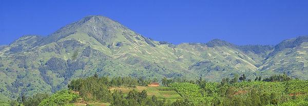 rwandarollinghills_exp.jpg