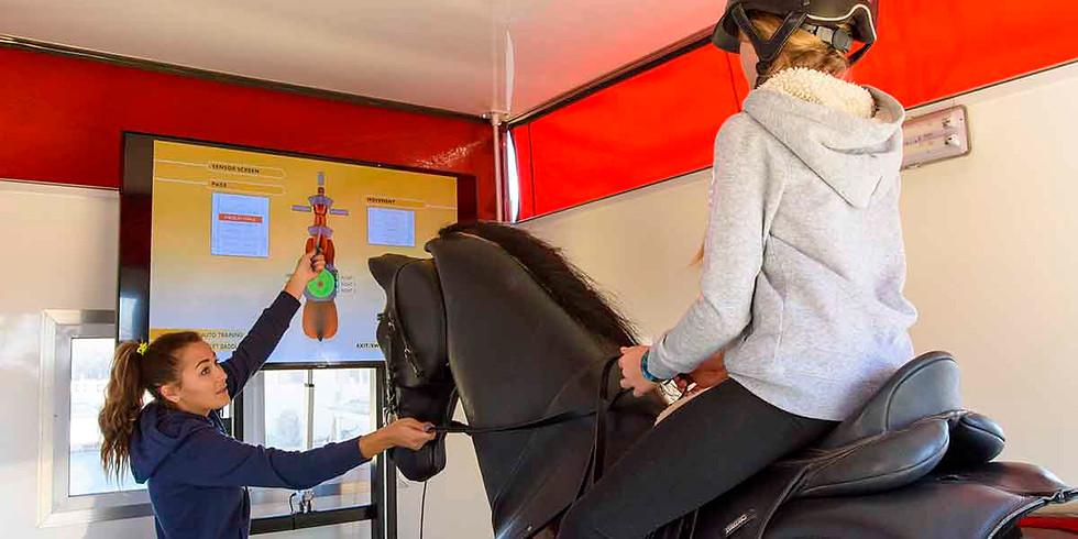 CHG Horse Riding Simulator