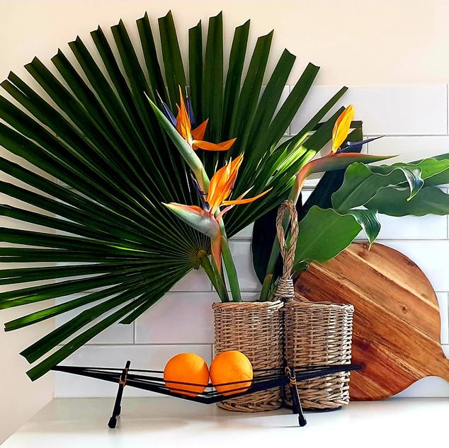 kitchen palm.jpg
