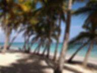 Plage de Petite Anse à Capesterre de Marie-Galante