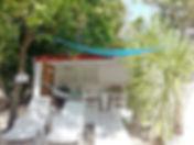 Bungalow Jardin Vanille à la rose du brésil hotel marie galante