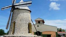 Distillerie Bellevue avec la rose du brésil marie-galante