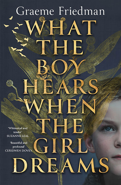 what the boy hears when the girl dreamsBooktopia cover.jpeg