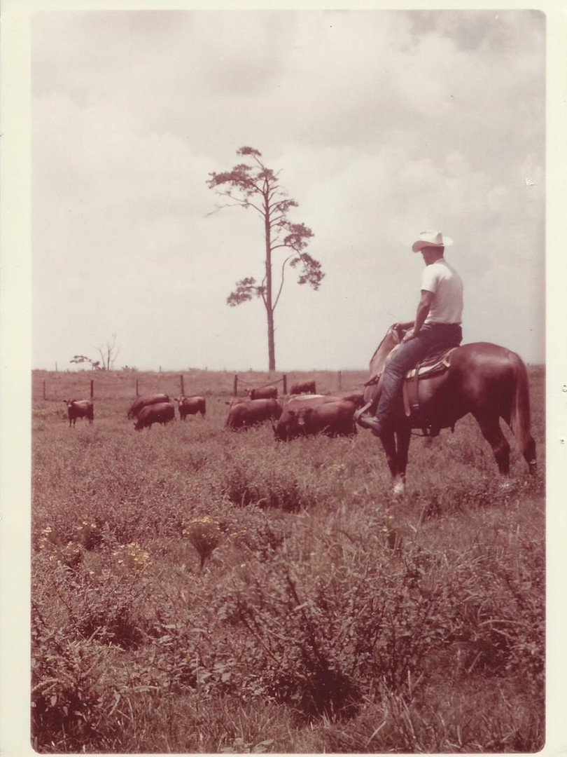 Rancher on Horse